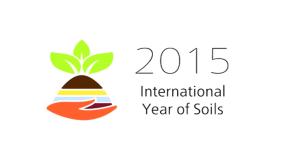 2015 año suelos